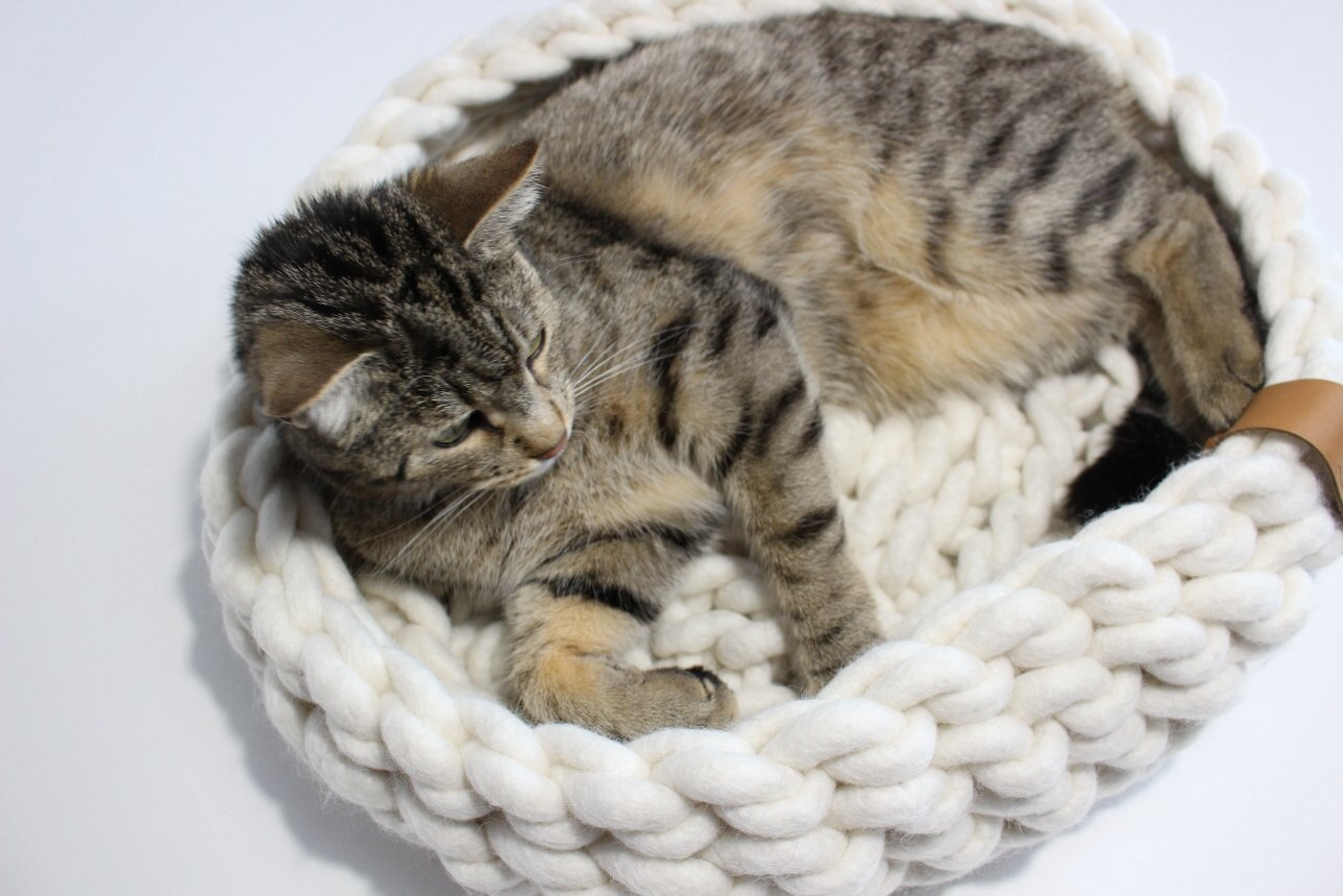 Katzenbett Hundebett
