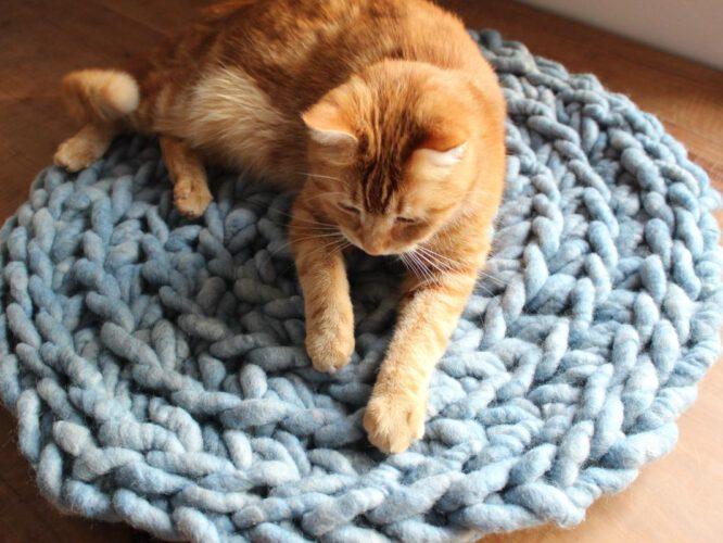 Katzenkissen | Hundekissen RUNDSCHMEICHLER